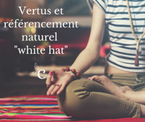 Vertus et référencement naturel white hat