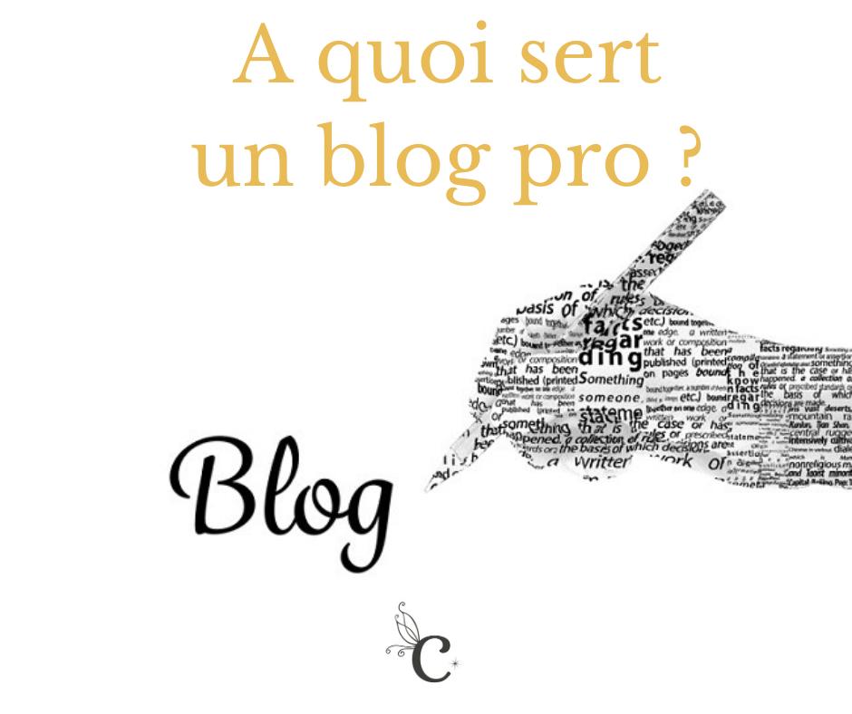 A quoi sert un blog professionnel ?