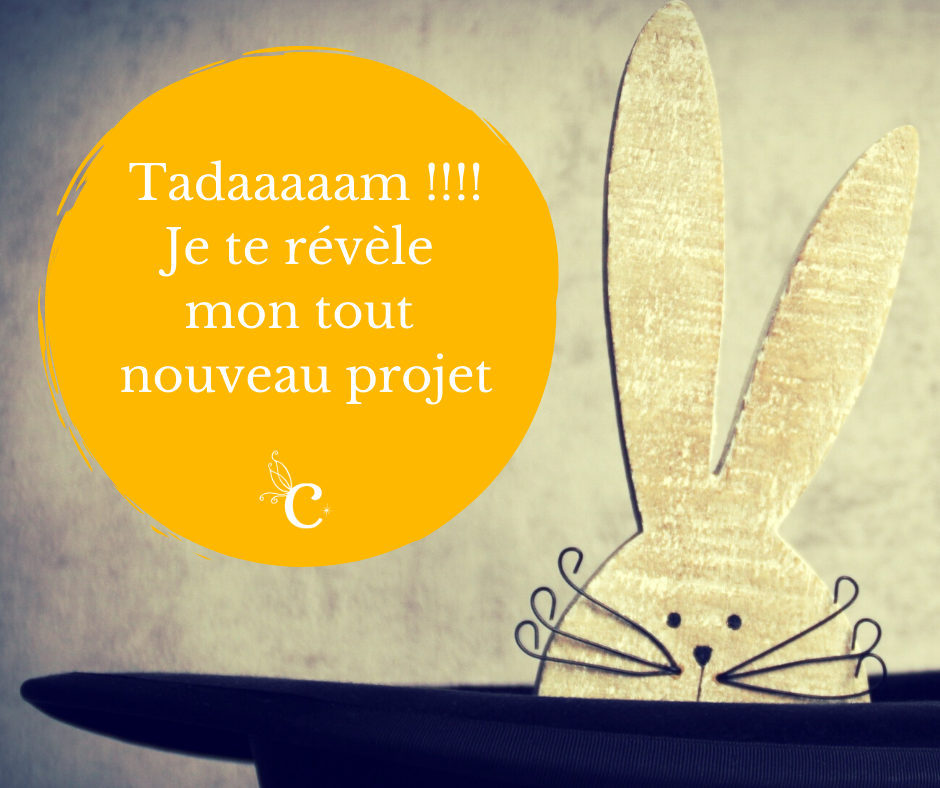 Tadaaaaam !!!! Je te révèle mon tout nouveau projet